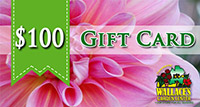 100giftcard-small